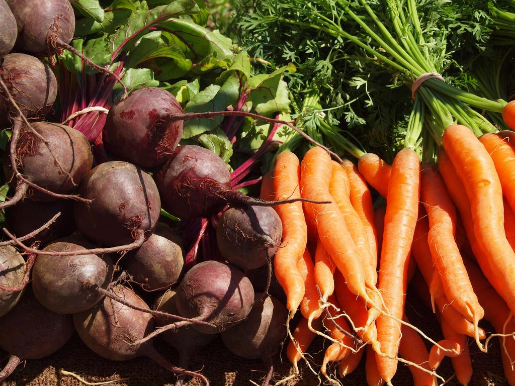 Ensalada De Zanahoria Repollo Y Remolacha 4 Mil Recetas Buen sabor y grandes beneficios. ensalada de zanahoria repollo y